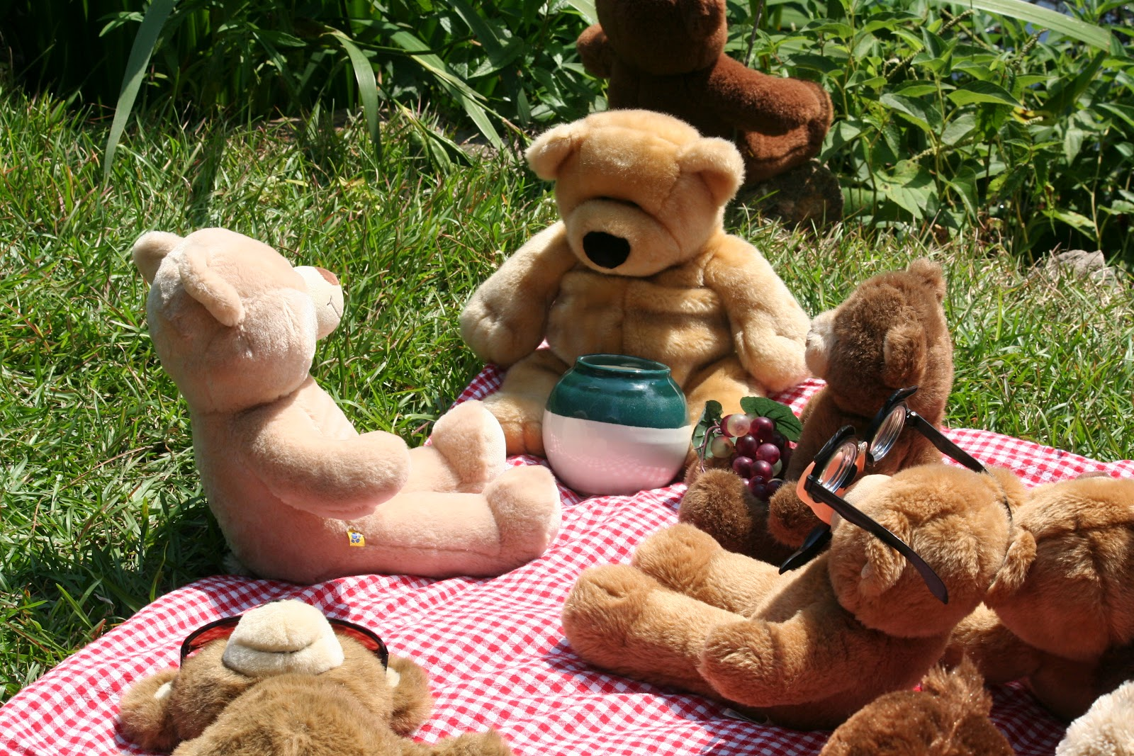 Teddy Bear Picnic Holy Trinity Anglican Church